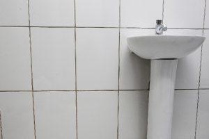 Aprenda a forma para esterilizar o azulejo de banheiro Cama e Banho Casa e Jardim  rejunte azulejo